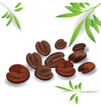 coffee grain vector image vector image