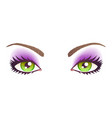 green eyes with make-up vector image vector image