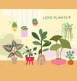 house plants green home floral succulents decor vector image vector image