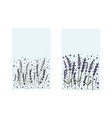 lavender set composition in doodle style vector image