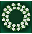 Ornament of white roses element for design vector image vector image