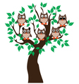 owl tree vector image vector image