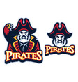 pirate mascot with parrot vector image vector image