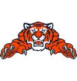 Tigers tiger