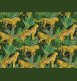 vestor seamless pattern with jaguars tropical vector image