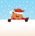 Bear Christmas Message vector image vector image