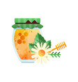 glass jar of honey and chamomile flower natural vector image vector image