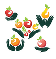 Hands and fruits vector image