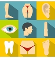Human body icons set flat style vector image vector image