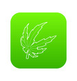 marijuana leaf icon green vector image