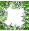 palm leaf background with white fram vector image vector image