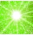 Summer Sun Light vector image vector image