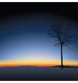 tree on sunset background vector image vector image