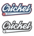 Vintage cricket label and badge vector image