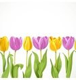 yellow and purple flowers tulips seamless vector image vector image