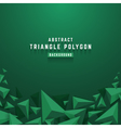Abstract 3D triangle polygon background vector image