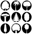 A set of trees icons vector image vector image