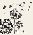 abstract dandelions dandelion with flying seeds vector image vector image