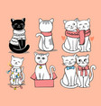 cute cats sit in row for your project vector image