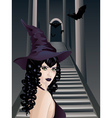 Gothic Stairs and Witch4 vector image vector image