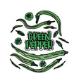 hand drawn green peppers vector image