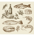 hand drawn sea food sketch vector image