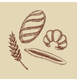 Set of bakery Croissant bread baguette and wheat vector image vector image