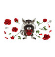 raccoon lovely animal cartoon character with red vector image
