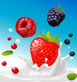 splash of milk with forrest fruit mix - with vector image vector image
