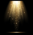 spotlight effect with sequins gold color vector image