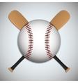 Ball and bat of baseball sport design vector image vector image