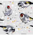 birds goldfinch on the snow vector image vector image