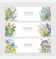 bundle horizontal banner templates with elegant vector image vector image