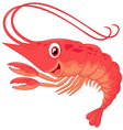 Cute shrimp cartoon vector image