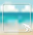 dolphin marine background vector image