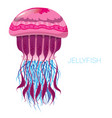 fantastic jellyfish vector image
