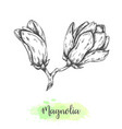 Hand drawn magnolia flower sketch floral