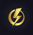 light bolt electric gold logo vector image vector image