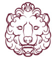 lion heraldry graphic image a lions head vector image