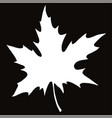 maple leaf silhouette in on black background vector image vector image