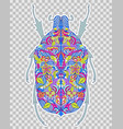 abstract colorful beetle vector image
