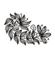 beautiful branch vector image