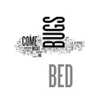 bed bugs come from text word cloud concept vector image vector image