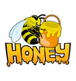 cute bee with honey vector image