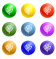 lily icons set vector image vector image