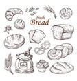 sketch bread hand drawn bakery products vector image