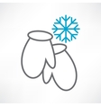 Two mittens and snowflake vector image