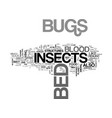 bed bugs insect text word cloud concept vector image vector image