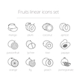 Fruits linear icons set vector image