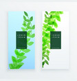 green vertical leaves banner design vector image vector image